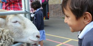 Vauxhall City Farm Visit